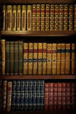 półka książek